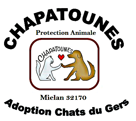 association de protection animale