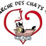 Adoption chats et chatons