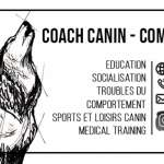 educateur canin - comportementaliste montpellier