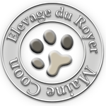 Elevage du Royer - Maine Coon - France