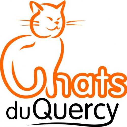 l'association chats du quercy